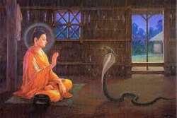 Phật Giáo: Trở Lại Đường Xưa
