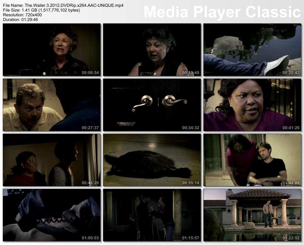 The Wailer 3 - 2012 DVDRip x264 AAC - Türkçe Altyazılı indir